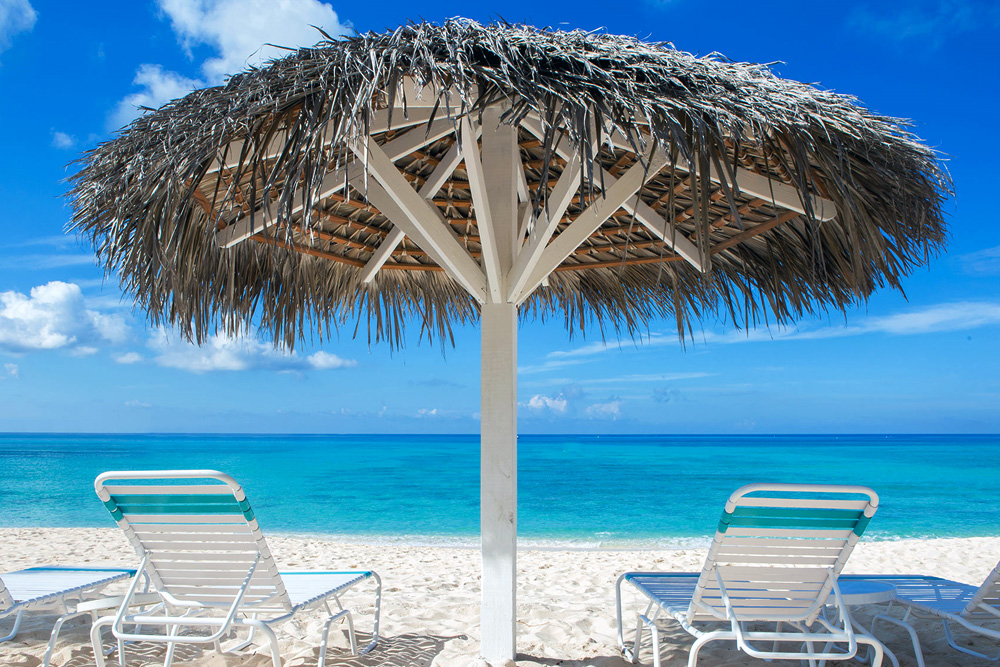 Relax under a Palapa